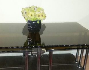 میزوگل میز