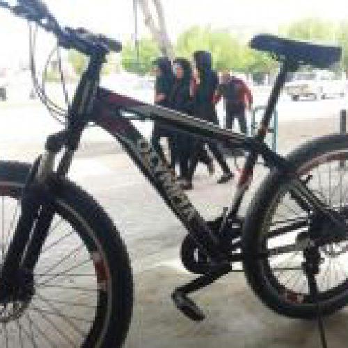 دوچرخه 26حرفهای