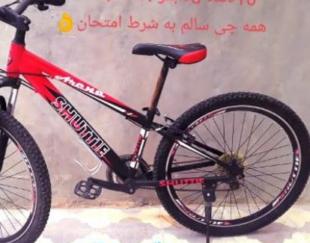 دوچرخه شاتل حرفه ای