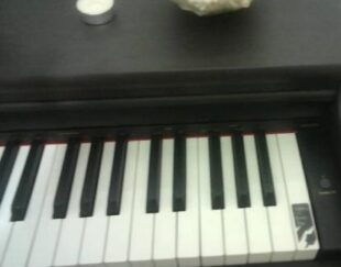 پیانو عالی SLP250