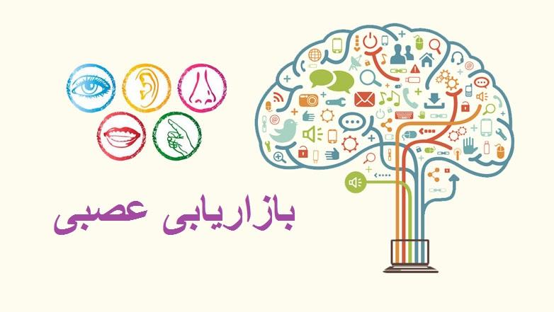 neuro marketing 01 - کاربردهای نورومارکتینگ و بازاریابی عصبی