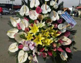 گل فروشی تاج گل ترحیم گل جشن