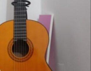 گیتار فروشی در حد