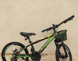 دوچرخه20 اسپورت