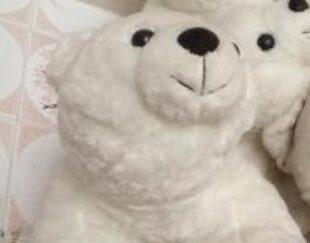 فروش عروسک خرس قطبی