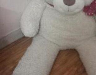 خرس سفید زیبا